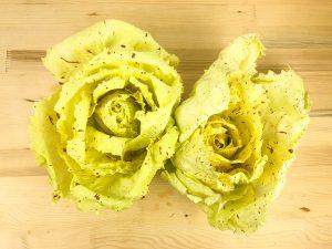 radicchio-variegato-veneto-castelfranco